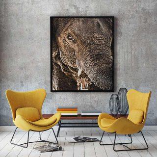 cadre-GillesChevillon-elephant-7